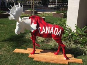 Team Canada Moose